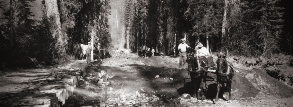 Clearing and grading, Glacier National Park, Montana, 1925.